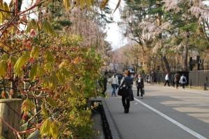 A benign-looking gaijin trap in Akita Prefecture